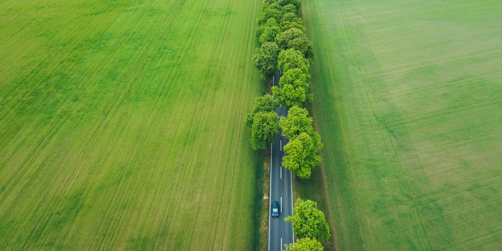 The US are putting in considerable work in an attempt to create a carbon neutral world, but are their attempts working? learn more about the global efforts currently underway in an attempt to green the grid.